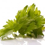 fresh herbs. lovage