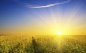 sunshine-