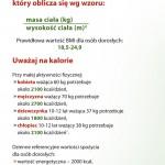 ulotka_izz_www_2