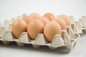 sxc.hu eggs fot.andar