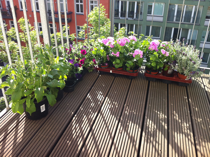 balcony-plants-good-design-on-others-images-12