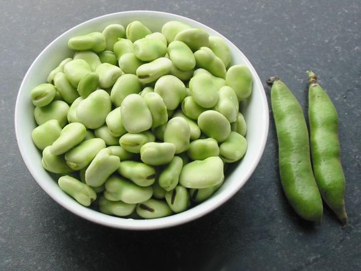 broad-bean-the-sutton