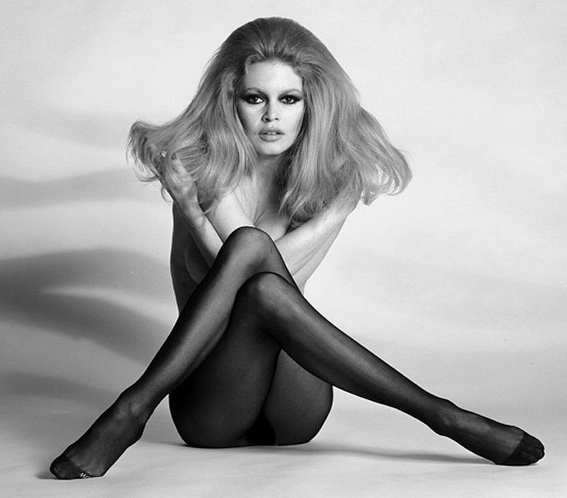 girl-hair-brigitte-bardot-stockings