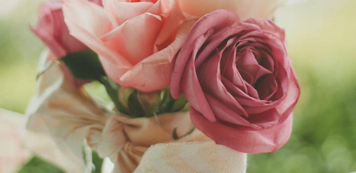 kwiaty-josh-felise